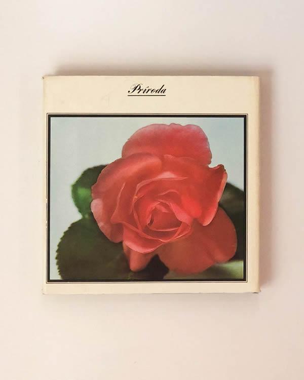 Ruža / kráľovná kvetov- Havlu, Jaša, Klimeš
